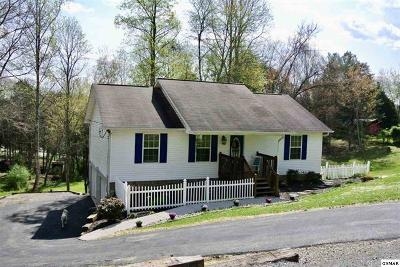 Sevier County Single Family Home For Sale: 2304 Island Blvd