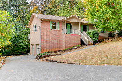 Knoxville Single Family Home For Sale: 1313 Viking Drive