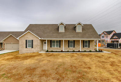 Knox County Single Family Home For Sale: 6303 Knightsboro Rd