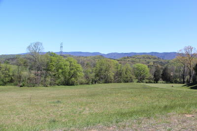 Blount County Residential Lots & Land For Sale: 1574 Mint Meadows Drive