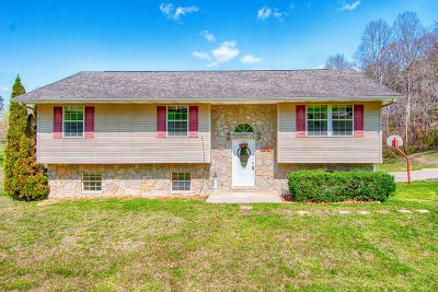 Campbell County Single Family Home For Sale: 483 Hollifield Drive