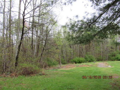Anderson County Residential Lots & Land For Sale: 330 Old Jacksboro Pike