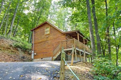 Sevier County Single Family Home For Sale: 1934 Orchard Drive