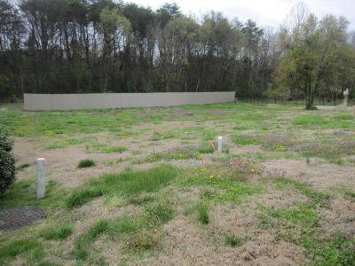 Knoxville Residential Lots & Land For Sale: S Creek Rd