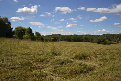 Maryville Residential Lots & Land For Sale: Tract 4 Lanier Rd