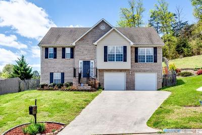 Knox County Single Family Home For Sale: 5109 Beaver Dam Lane