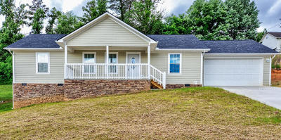 Campbell County Single Family Home For Sale: 167 Judge Asbury Court