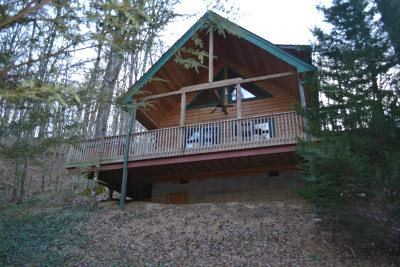 Townsend Single Family Home For Sale: 316 Black Mash Hollow Rd