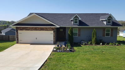 Sevier County Single Family Home For Sale: 161 Clear Creek Way