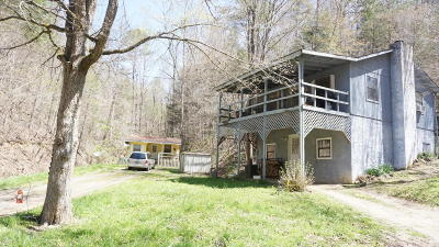 Sevier County Single Family Home For Sale: 3213-3215 Bear Mountain Lane