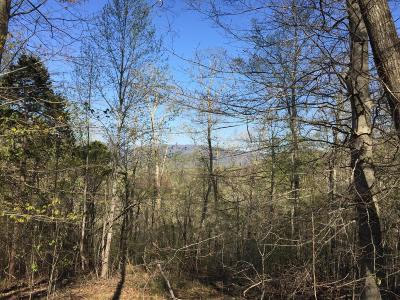 Grainger County Residential Lots & Land For Sale: Smith Hollow Rd