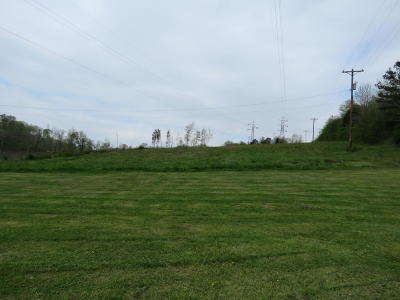 Lenoir City Residential Lots & Land For Sale: Old Highway 95