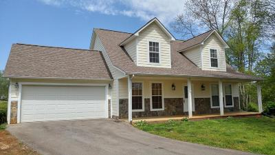 Sevier County Single Family Home For Sale: 1267 Lori Ellen Court