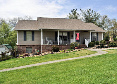 Sevier County Single Family Home For Sale: 165 Maple Ridge Lane
