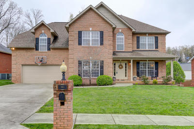 Knox County Single Family Home For Sale: 2910 Reflection Bay Drive