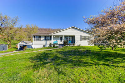 Lafollette Single Family Home For Sale: 1635 Back Valley Rd