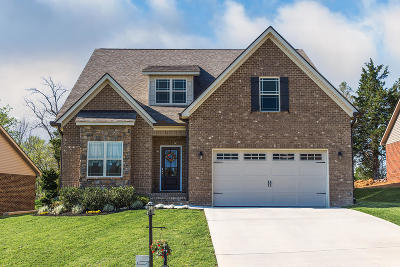 Knoxville Single Family Home For Sale: 7807 Saddlebrooke Drive