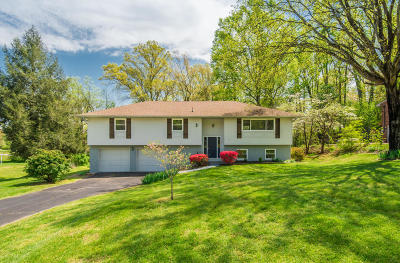 Knoxville Single Family Home For Sale: 7816 Luxmore Drive