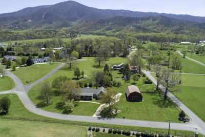 Sevierville Single Family Home For Sale: 3615 Deer Field Circle