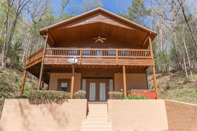 Sevier County Single Family Home For Sale: 3535 Birds Creek Rd
