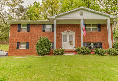 Knoxville Single Family Home For Sale: 608 S Gallaher Rd