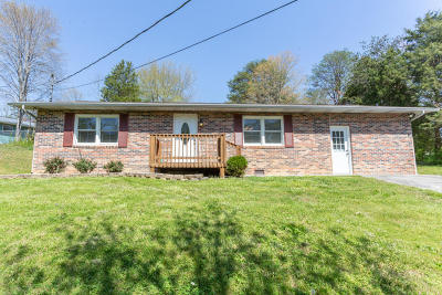 Sevierville Single Family Home For Sale: 615 Kingfisher Ave
