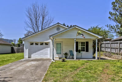 Knoxville Single Family Home For Sale: 117 Butler Drive