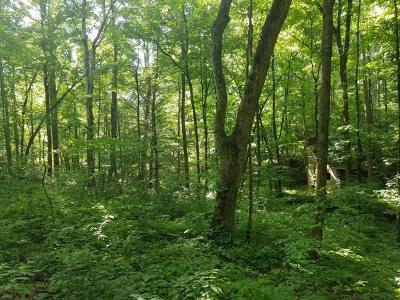 Maryville Residential Lots & Land For Sale: Old Hwy 72