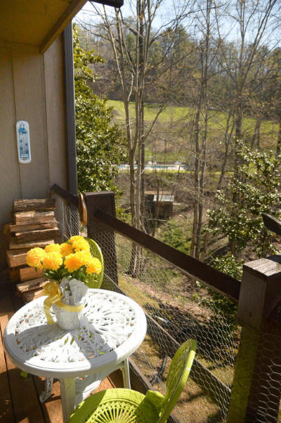 Sevier County Condo/Townhouse For Sale: 1081 Cove Rd #913