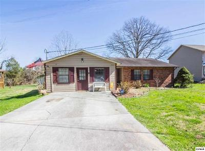 Sevier County Single Family Home For Sale: 2837 Willa View Drive