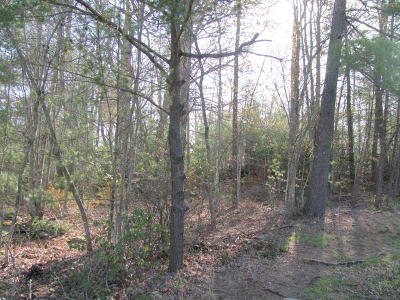 Fairfield Glade Residential Lots & Land For Sale: Lot 16 Forest Hill Court