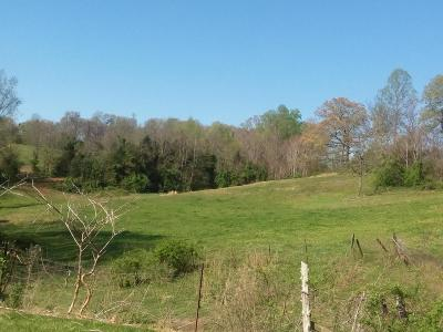 Anderson County, Campbell County, Claiborne County, Grainger County, Hancock County, Hawkins County, Jefferson County, Union County Residential Lots & Land For Sale: Sallings Rd