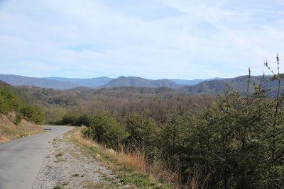 Sevier County Residential Lots & Land For Sale: Lot 166e Jones Creek Lane