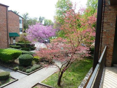 Knoxville Condo/Townhouse For Sale: 2718 Painter Ave #Apt C109
