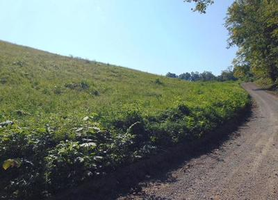 Claiborne County Residential Lots & Land For Sale: 996 Vancel Rd