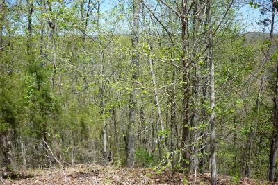 Residential Lots & Land For Sale: Lot 38 Eerie Point