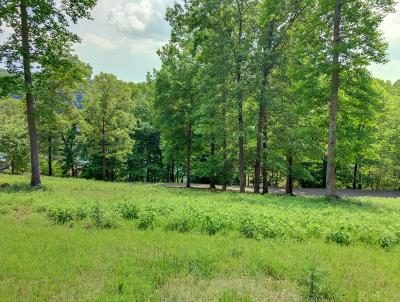 Anderson County, Campbell County, Claiborne County, Grainger County, Union County Residential Lots & Land For Sale: Deerfield Way