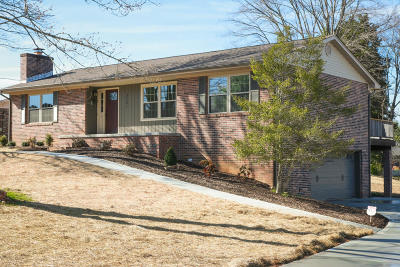 Knoxville Single Family Home For Sale: 3721 Wittenham Drive