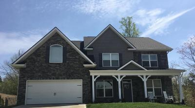 Knoxville Single Family Home For Sale: 2954 Spencer Ridge Drive