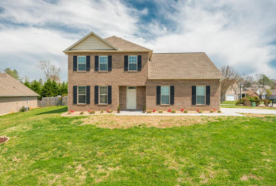 Single Family Home For Sale: 135 Gunter Drive