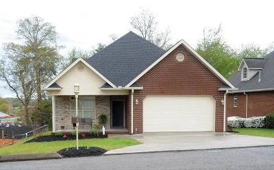 Knoxville Condo/Townhouse For Sale: 7511 School View Way