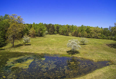 Knoxville TN Residential Lots & Land For Sale: $230,000