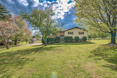 Alcoa Single Family Home For Sale: 1419 Marti Lane Lane