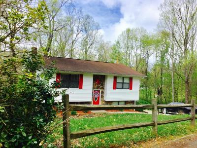 Tazewell Single Family Home For Sale: 464 Norris Drive