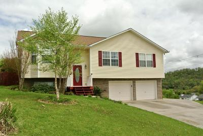 Knoxville TN Single Family Home For Sale: $189,900