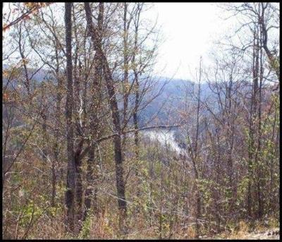 Tazewell Residential Lots & Land For Sale: Lot 539 Whistle Valley Rd