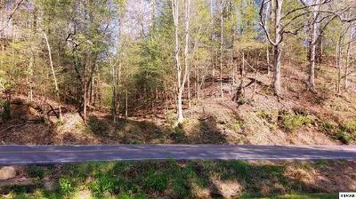 Gatlinburg Residential Lots & Land For Sale: 220 Glades Rd