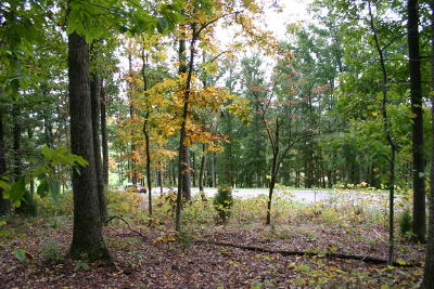 Residential Lots & Land For Sale: 1950 Turner Landing Rd