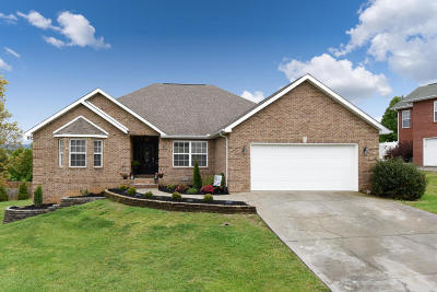 Maryville Single Family Home For Sale: 1346 Meadside Drive