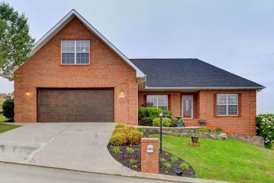 Maryville Single Family Home For Sale: 423 Royal Oaks Drive